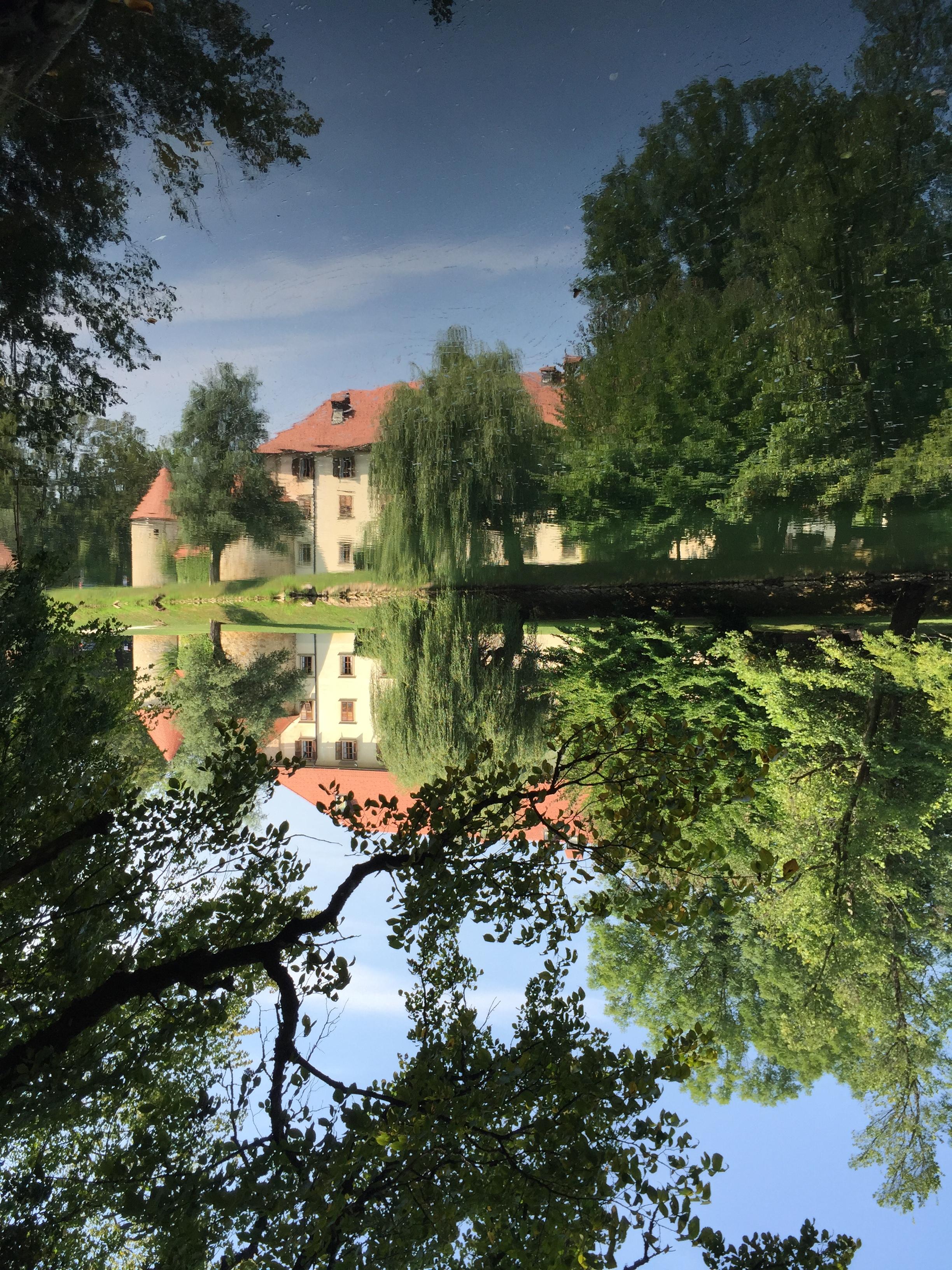 IgSlovenia2