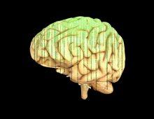 Ilon Mask: Prenos misli na daljinu za 8 do 10 godina!
